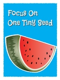 Focus on Seed Writing Personal Narrative Poster