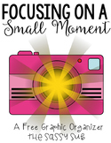 Focusing on Small Moments: A Graphic Organizer for Persona