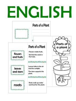 Fold and Learn - Parts of a plant