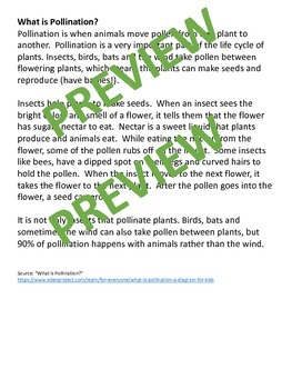 Animals Seeding/Pollination-Foldable/Mimic/Hands On: NGSS 2LS2-2 (Editable)