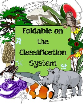 Foldable on the Classification System