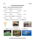 Follow of Energy and Ecosystem Assessment 5th Grade Science Quiz Special Ed.