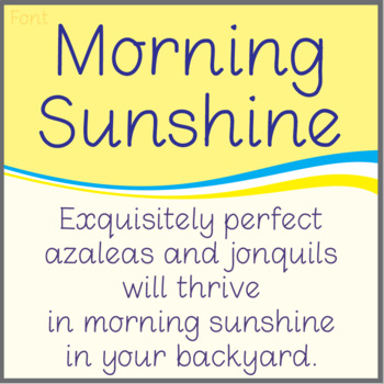 Font: Morning Sunshine (True Type Font)