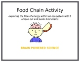 Food Chains: Cut and Paste Activity
