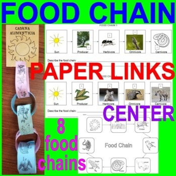 Food Chain Activity And Center