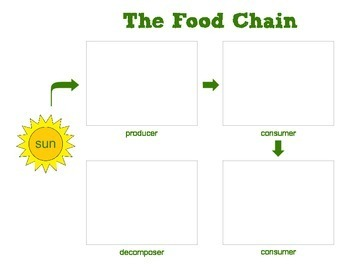 Food Chain Activity: Producers, Consumers, and Decomposers