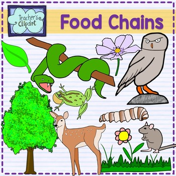 Food Chain Animals clipart