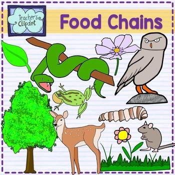 Food Chain Animals clipart by Teacher's Clipart | TpT