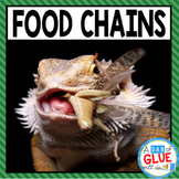 Food Chains (Distance Learning)