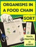 Food Chain Organisms Sort Cut & Paste: Producer, Consumer, Decomposer + REVIEW