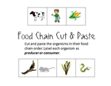 Food Chain Cut and Paste (Producers/Consumers)