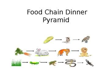 Food Chain Dinner Pyramid