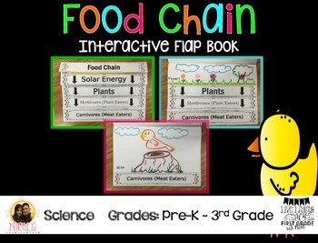 Food Chain- Flap Book