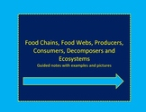 Food Chain, Food Web, Ecosystem, Producer, Consumer, Decom