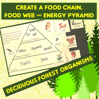 Food Chain, Food Web, Energy Pyramid Cut &Paste Application, Practice or Assess