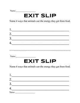 Food Chain/Food Web Exit Slips or Acitivities