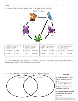 Food Chain Food Web Quiz