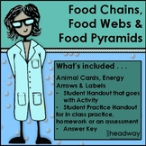 Ecosystems: Food Chain, Food Web and Food Pyramid Activity