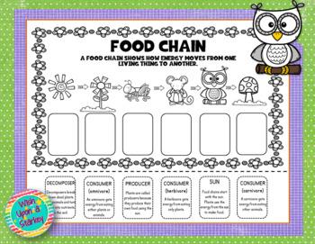 Food Chain Fun