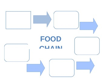 Food Chain Graphic Organizer by Samantha Abercrombie | TpT