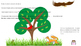 Food Chain Interactive Notebook Activity