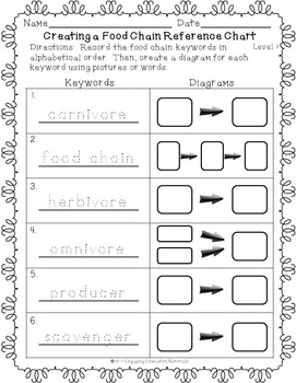 Food Chain Keywords Puzzles and Differentiated Recording Sheets