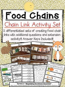 Food Chain Links Activity Set