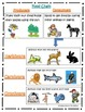 Food Chain Pack