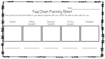 Food Chain Planning Sheet