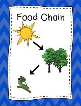 Food Chain Posters