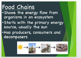 Food Chain PowerPoint and Worksheet Bundle