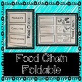 Food Chain (Producers, Consumers, & Decomposers)- Interactive Notebook/Foldable