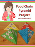 Food Chain  Pyramid Project