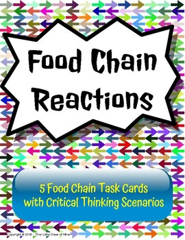 Food Chain Reactions