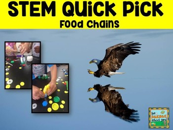 Food Chain STEM/NGSS Science Quick Pick