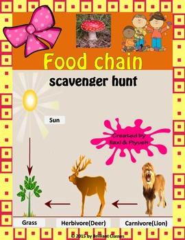Food Chain Scavenger Hunt