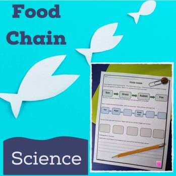 Food Chain Science NO Prep Worksheet