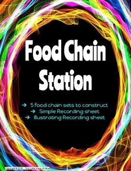 Food Chain Station