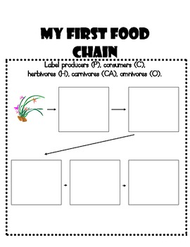 Food Chain Student Booklet