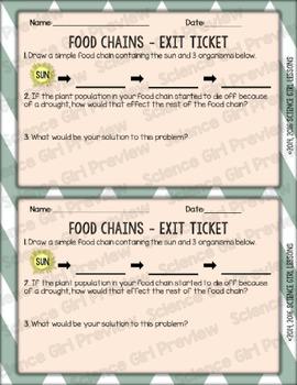 Food Chain Tag
