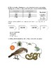 Food Chain Test/Study Guide