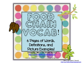Food Chain Unit Vocabulary and Matching Worksheet!
