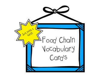Food Chain Vocabulary Cards