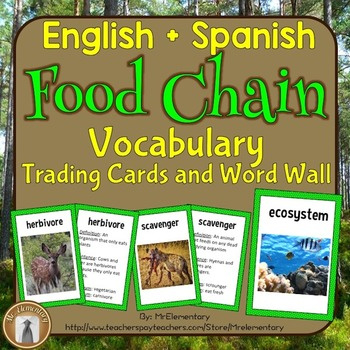 Food Chain Vocabulary Trading Cards and Word Wall Posters