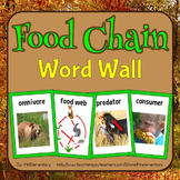 Food Chain Vocabulary Visual Word Wall