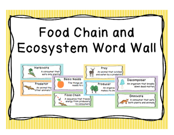 Food Chain Word Wall