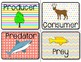 Food Chain Word Wall Kit