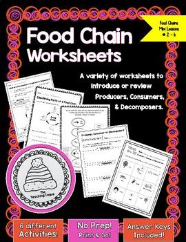 Food Chain Worksheets