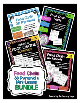 Food Chain and 3D Pyramid Bundle