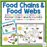 Food Chain and Food Web Activities
